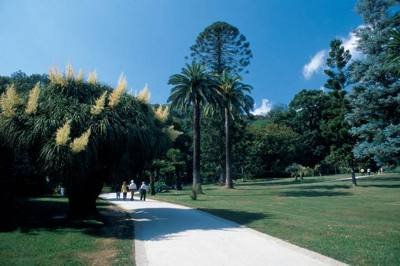 Il giardino nel giardino il giardino delle esperidi - Il giardino italiano ...